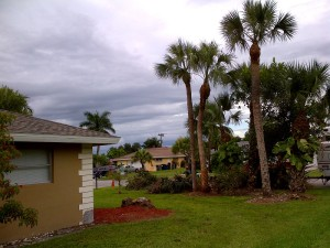Fort Myers-20140913-00444